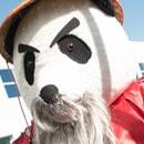 Panda_Thumb.jpg