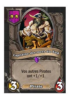 Serviteur du mode Champs de bataille Capitaine des mers du Sud + illustration