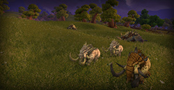 Nagrand_Dailies_17_EM_WoW_Lightbox_CK_250x130.jpg