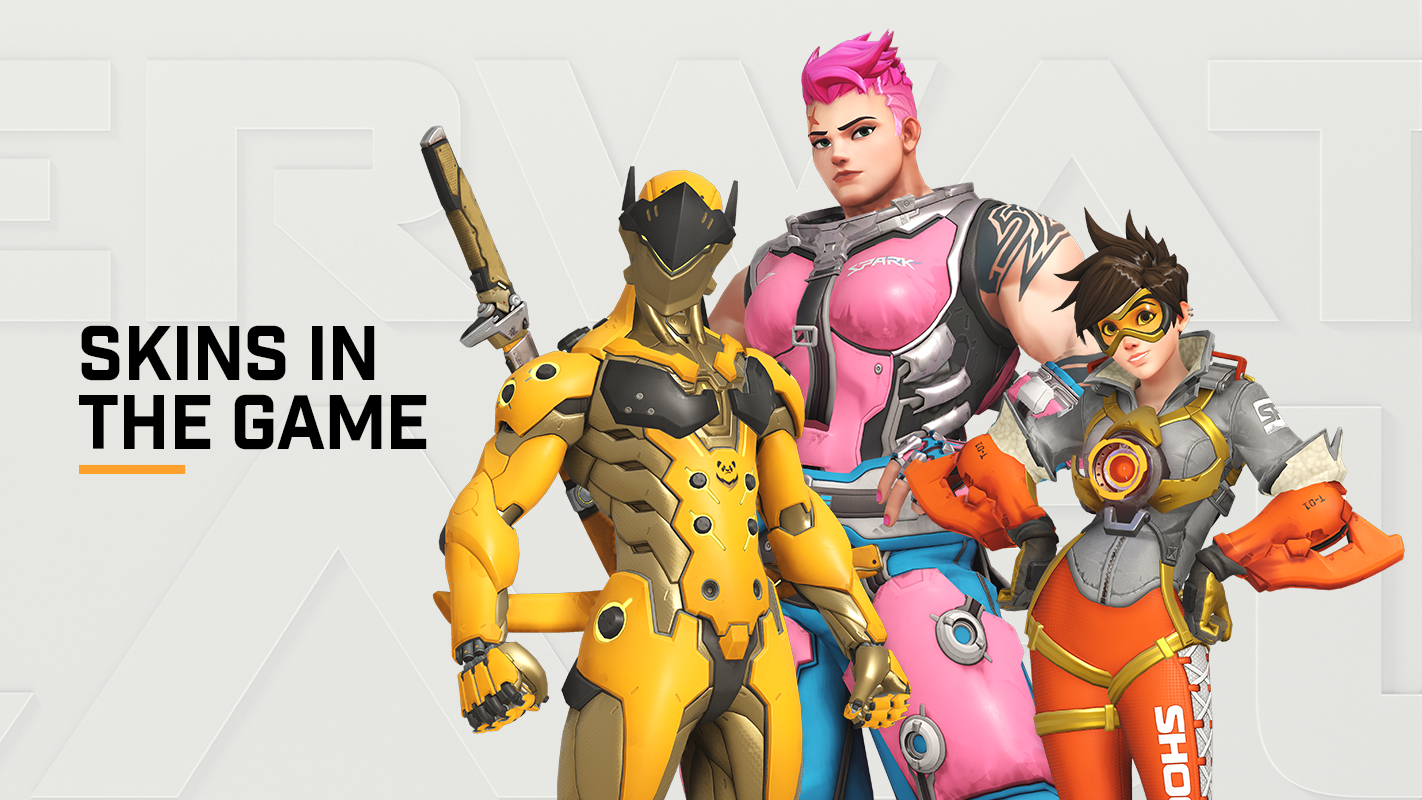 Introducing Skins in the Game