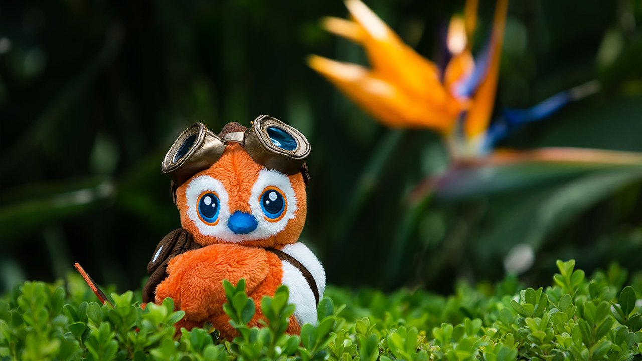 traveler pepe plush