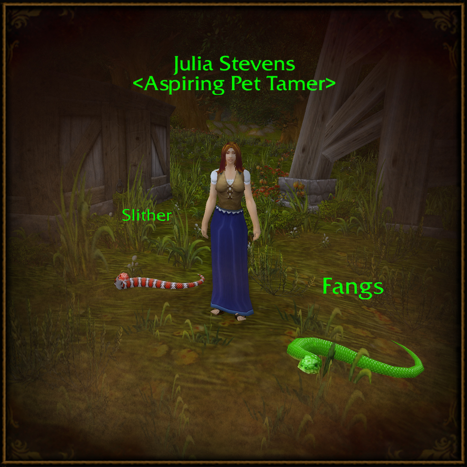 WoW_Pet_JuliaStevens_960x960.jpg