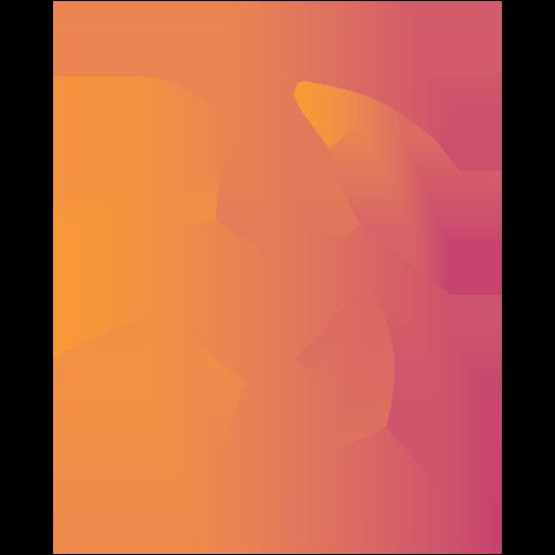Team BlossoM logo
