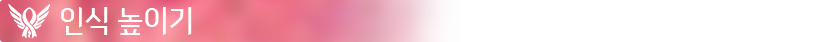 PinkMercySkin-BlogSectionBar-BeAHero_OW_JP.png