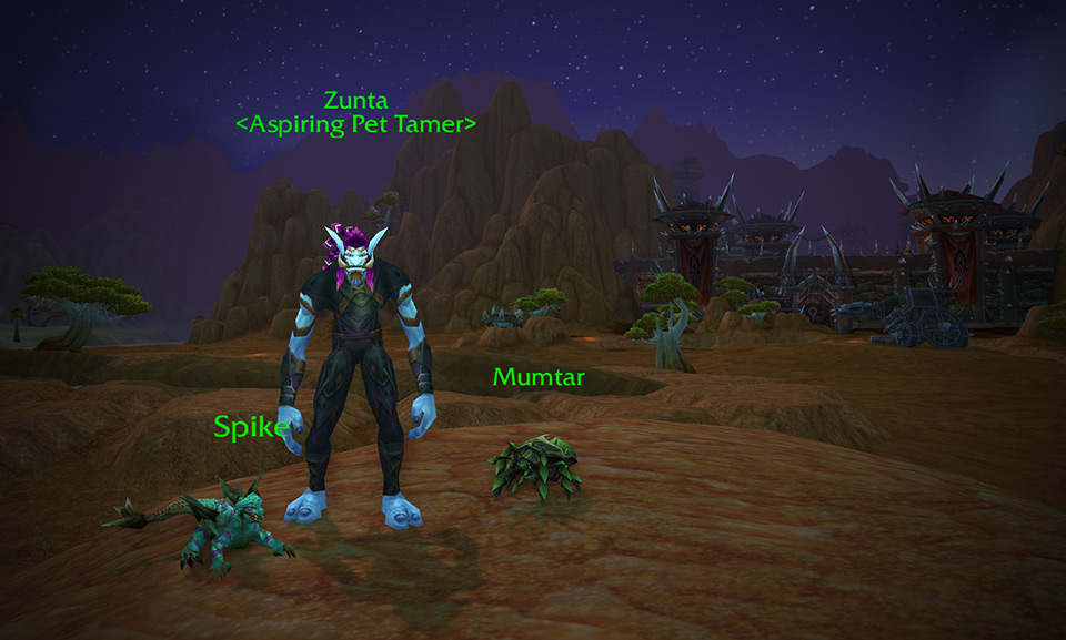 Major Payne's Advanced Pet Battles Training: Zunta