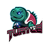 Turtle Tiny (1).png