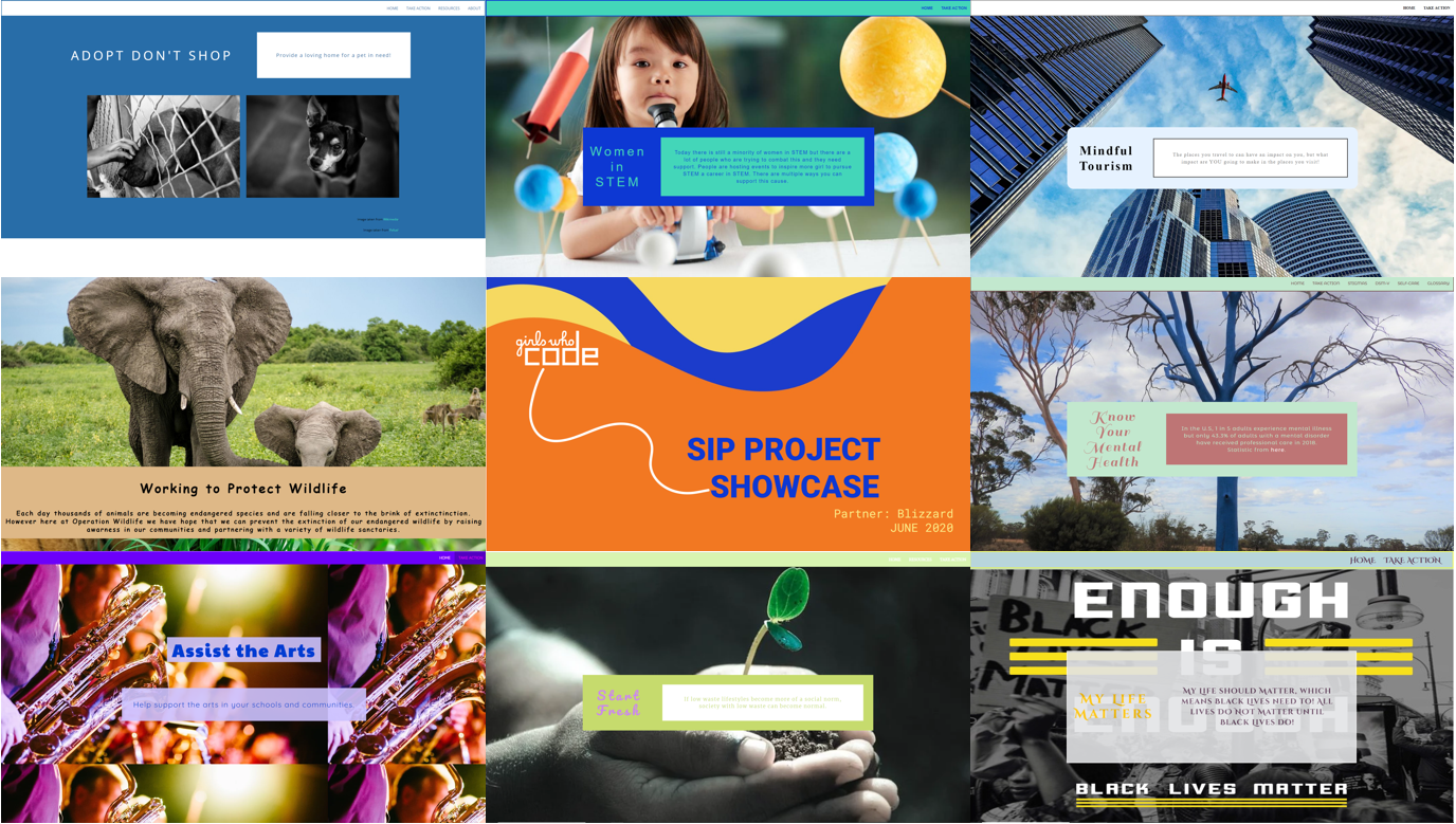 A collage of student websites covering topics such as wildlife protection, women in STEM, mindful tourism, and social justice.