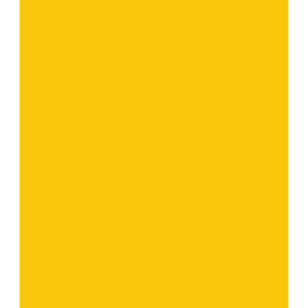 Team Dignitas logo
