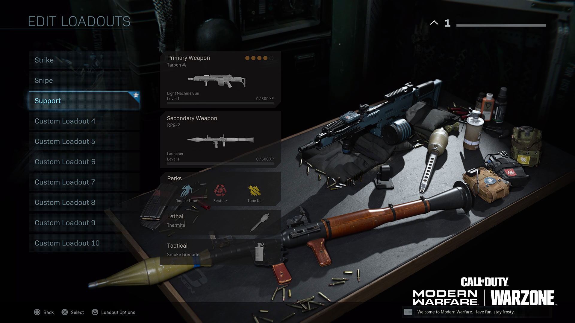 This loadout shines in a supporting role